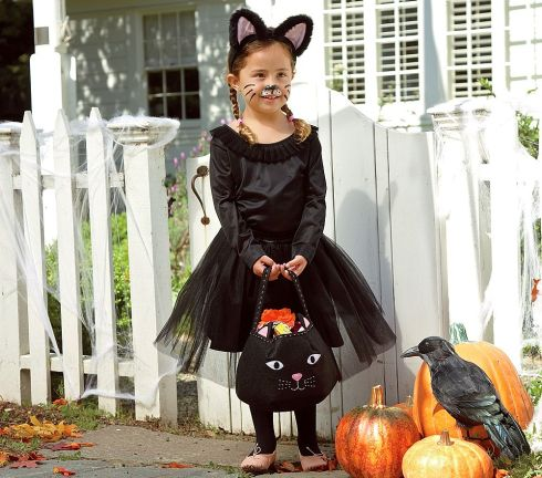 pbk cat costume